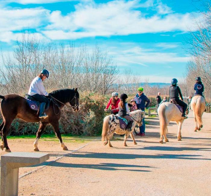 paseos a caballo en zaragoza