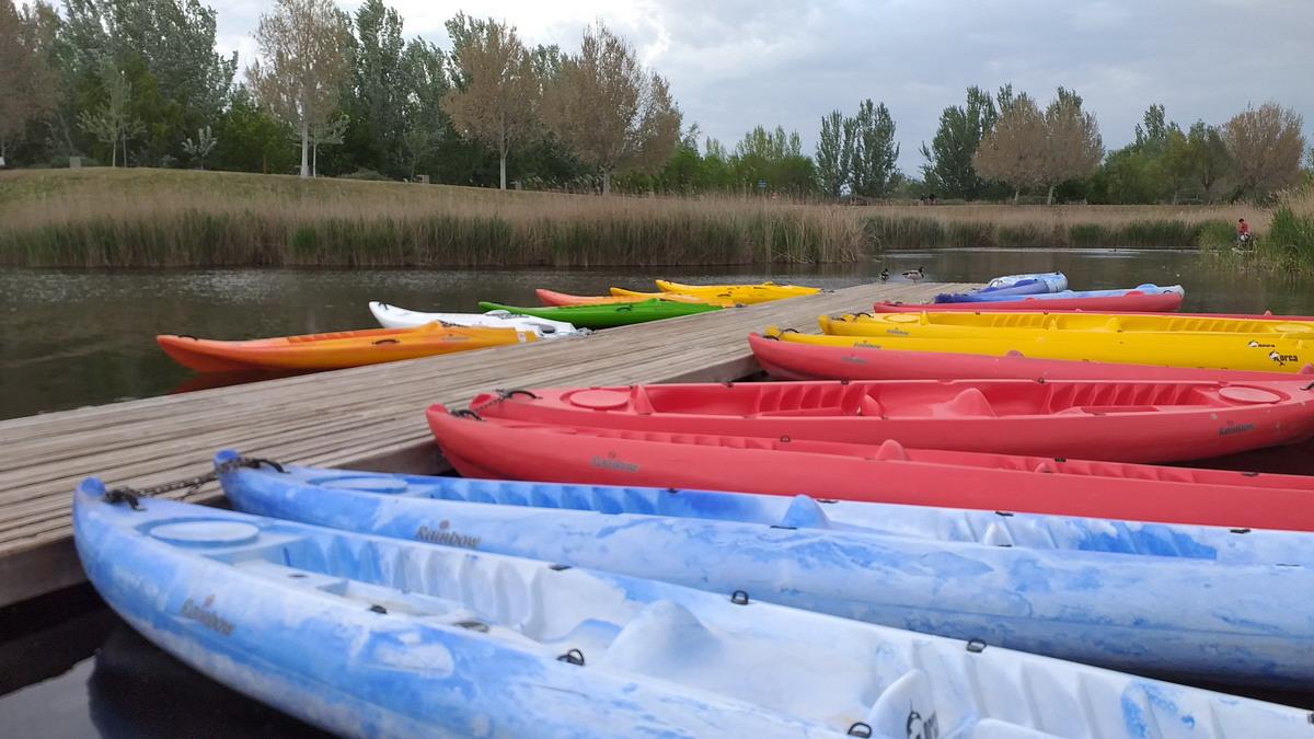 Paseos en Kayak en grupo